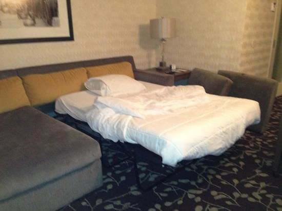 Embassy Suites by Hilton Napa Valley:                   pull out sofa