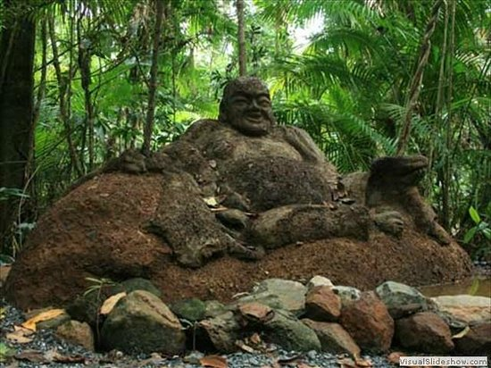 Rainforest Hideaway: One of the many sculptures on the trails on the 5 acre property