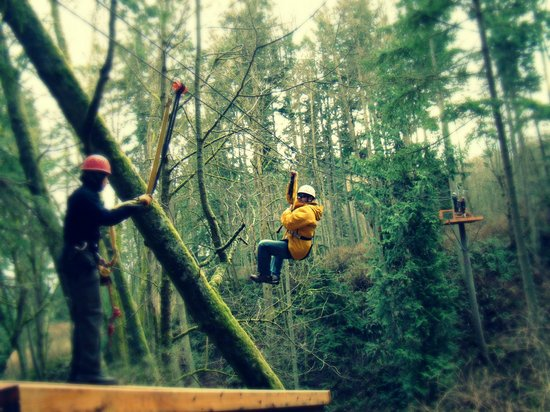 Canopy Tours Northwest:                   Awesome time