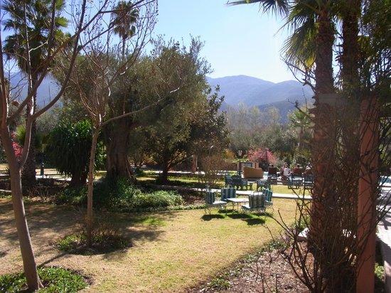 Domaine de la Roseraie:                   Gardens