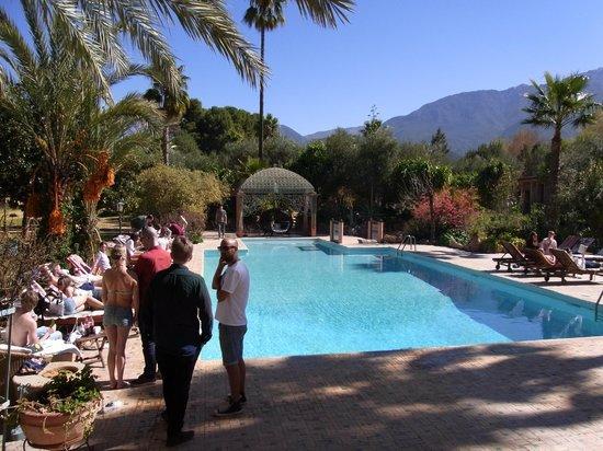 Domaine de la Roseraie:                   Gorgeous pool