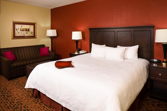 Hampton Inn Columbia: Guest Room King Study with pullout Sofa Bed