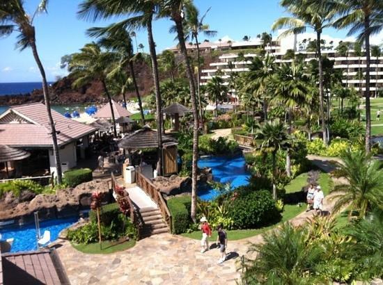 Sheraton Maui Resort & Spa:                   Sheraton Maui