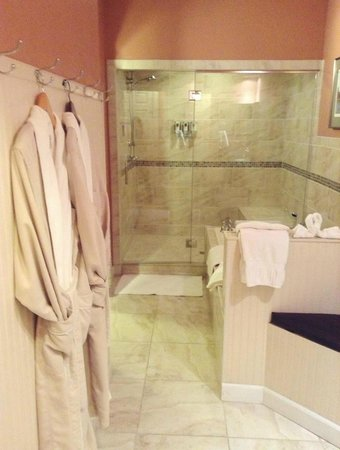 The Speckled Hen Inn:                   Madison Lake's Spa Bathroom
