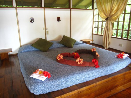 Samasati Retreat & Rainforest Sanctuary:                   Sweet welcome in the room