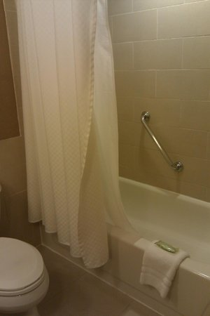 The Westin Tysons Corner: Tub/shower