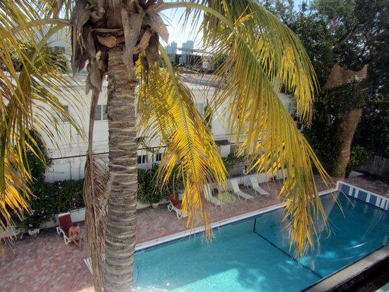 Tropics Hotel & Hostel: vue sur la piscine