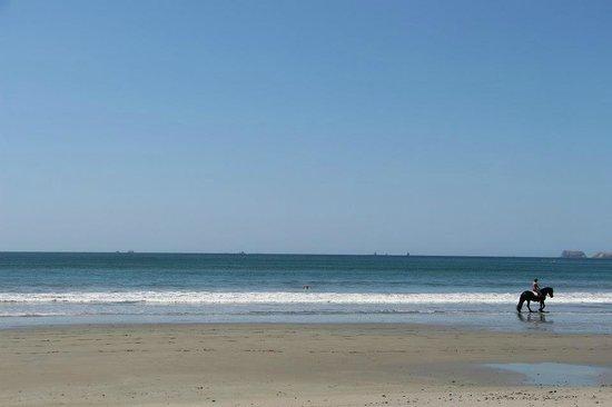 Hotel Sugar Beach:                   the beach