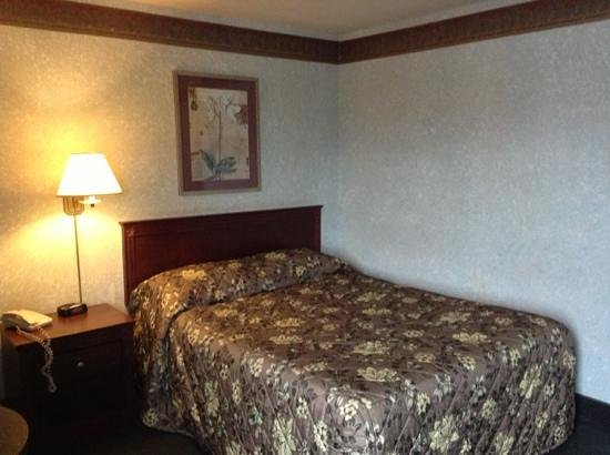 Canadas Best Value Inn Toronto:                   single queen room.