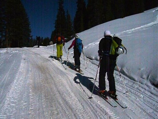 Apex Mountain School - Private Day Trips:                                     Long way to go!