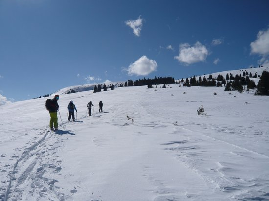 Apex Mountain School - Private Day Trips:                                     Half way up!