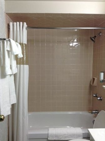 Canadas Best Value Inn Toronto:                   shower.