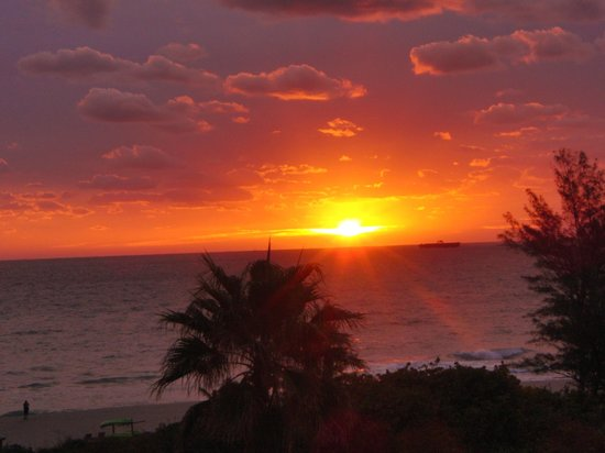 Palm Beach Shores, FL:                   excellent sunrises everyday!!
