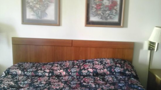 Econo Lodge Ruther Glen:                   King size bed with a slide of pillows