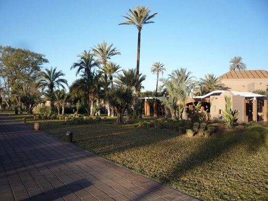 Pullman Marrakech Palmeraie Resort and Spa:                   walkway to hotel