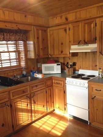 Petit Jean State Park:                   cabin kitchen