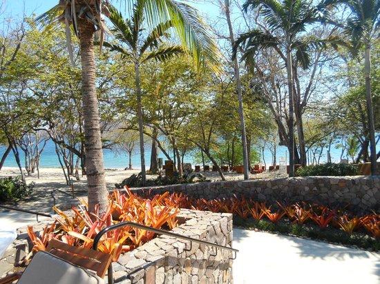 Four Seasons Resort Costa Rica at Peninsula Papagayo: Beach Area