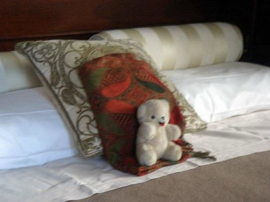 Hotel Bucintoro: Comme dans tous les hotels, il prend ses aises...