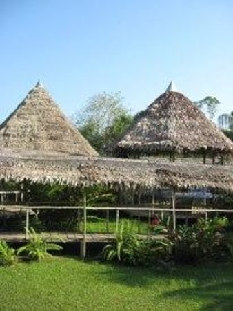 Amazon Rainforest Lodge:                                     Los pasadisos interiores