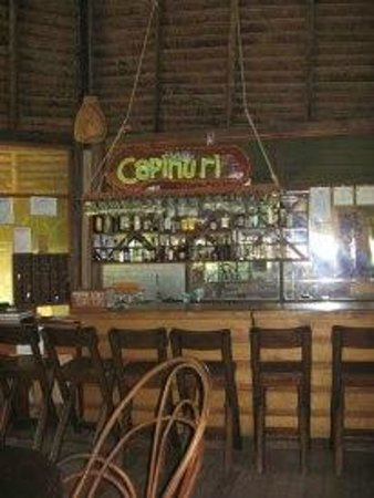 Amazon Rainforest Lodge:                                     El bar