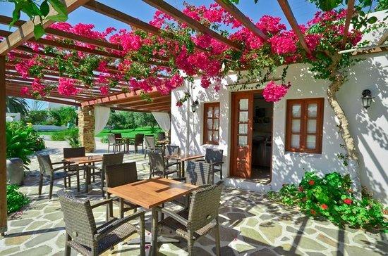 Birikos Studios & Apartments: Bar Area