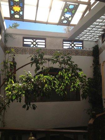 Dar Meziana Hotel: Skylight