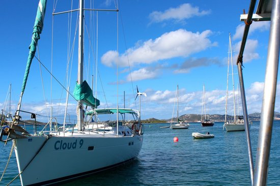 Cloud 9 Sailing Adventures:                   Cloud 9