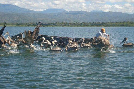 Hotel Evasion : pêche artisanale ur lagune