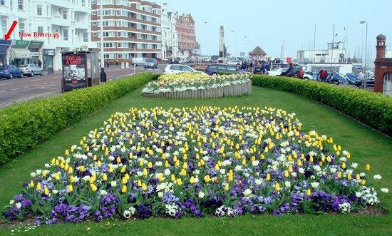Bistro 45:                   Gardens opposite
