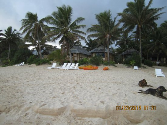 Palm Grove: Beachfront units and free kayaks