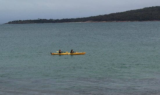 Freycinet Adventures:                   Coles Bay