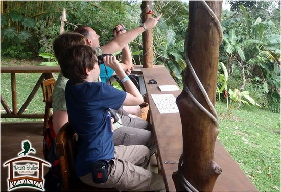 Dave & Dave's Costa RIca Nature Pavilion Park: Family and Comfort