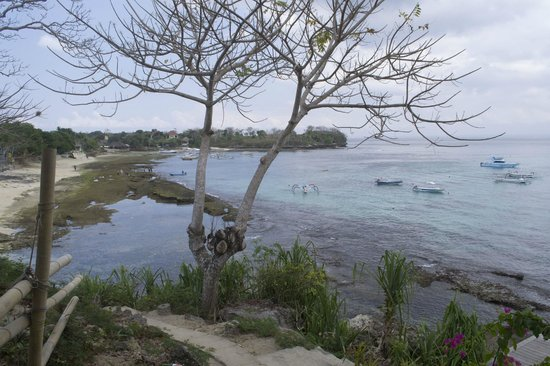 Batu Karang Lembongan Resort & Day Spa:                                     Views over Tamarind Beach. Deck on the right leads to Small