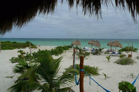 Almaplena Eco Beach Resort:                                                       Nice beach