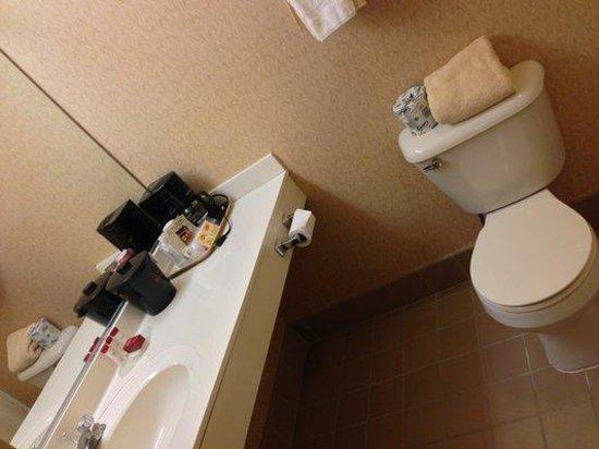 Ramada Galena Hotel and Day Spa: Bathroom