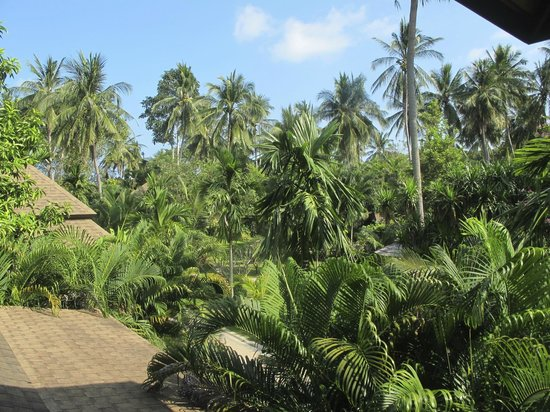 Fair House Beach Resort & Hotel: View from room