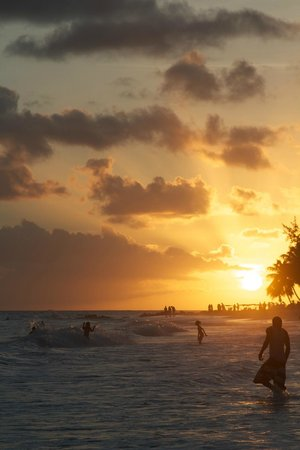 Bougainvillea Barbados:                   The beach at sunset