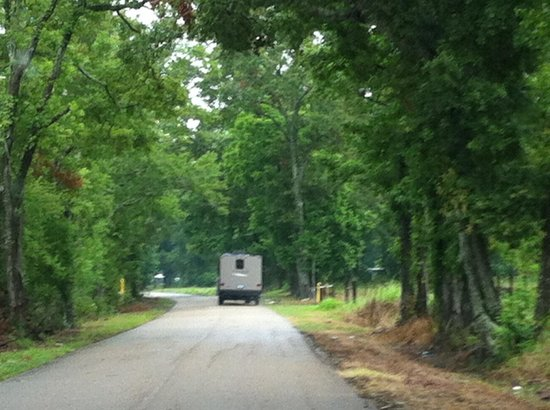 Abbeville, LA: Driving on last road to park.