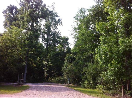 Abbeville, Луизиана: Spot