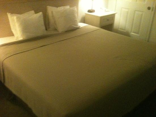 Best Western Plus - Island Inn:                   king bed with tiny pillows rm 108
