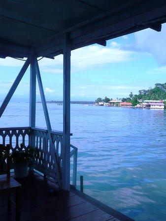 Hotel Caribbean View:                   vue sur la mer