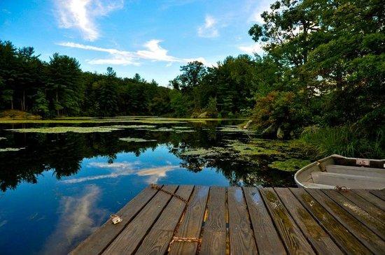 Arrow Park: Lake on property