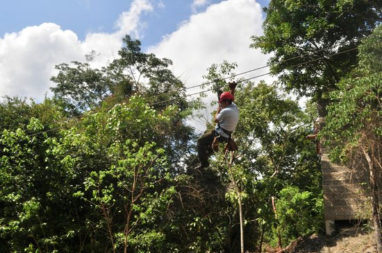 Calico Jack's Belize Jungle Canopy and Zip Lining:                   one of our guide Zip Lining with ease