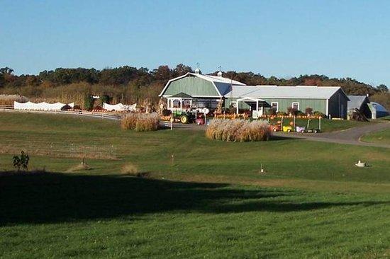 Country Bumpkin Farm Market