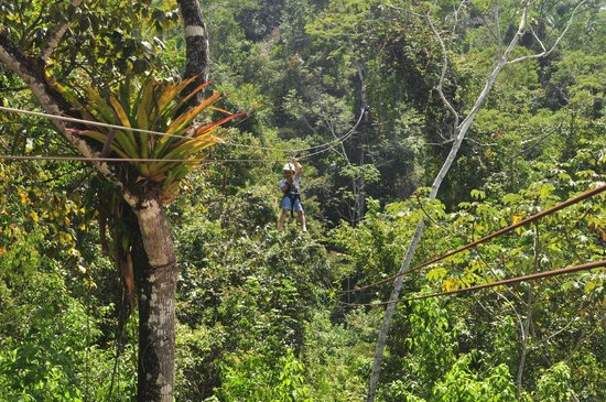 Calico Jack's Belize Jungle Canopy and Zip Lining:                   Returning to our starting point
