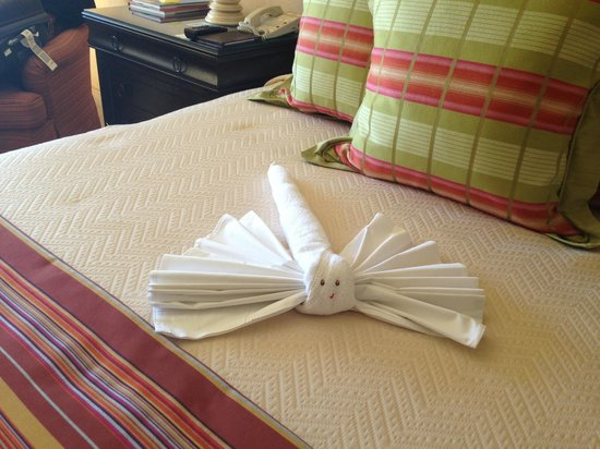 Hilton Los Cabos Beach & Golf Resort:                   Dragonfly towel waiting for us
