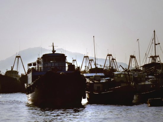 Cheung Chau Island:                   Boats in the harbour