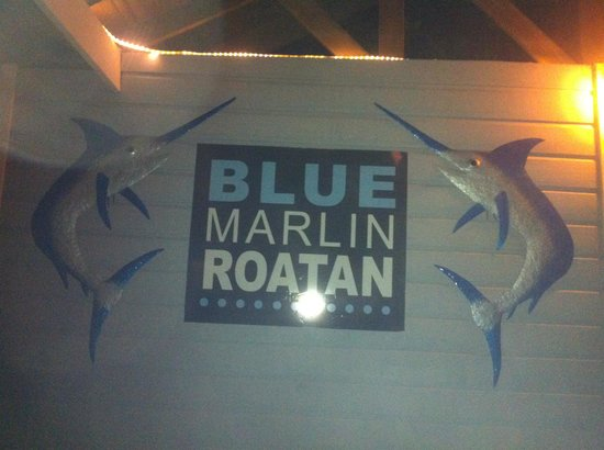Blue Marlin :                   the sign