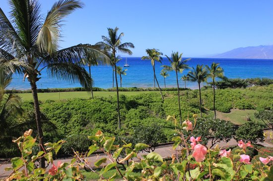 Makena Beach & Golf Resort:                   View from the balcony of our room.