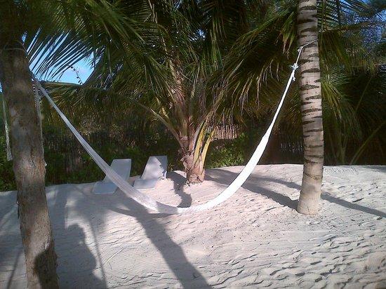 Cabanas Tulum:                   sleepy hammock